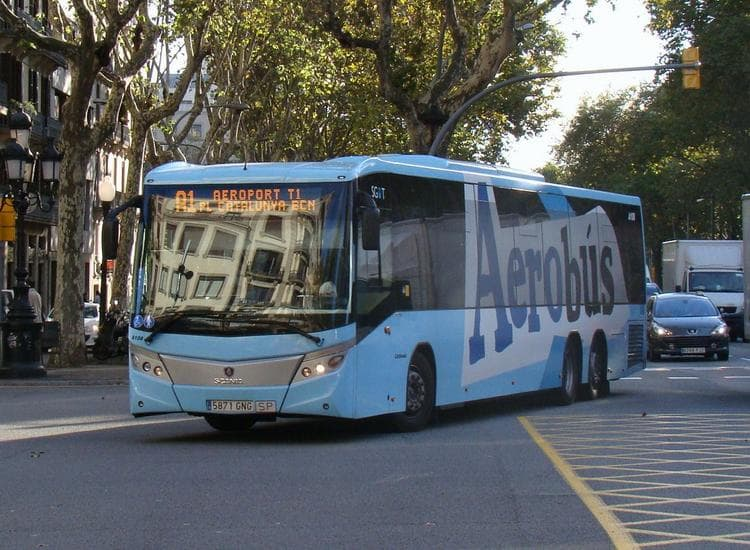 Специальный автобус A1